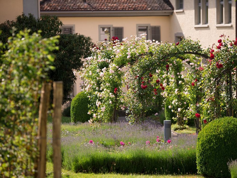 Natur Im Garten Bodensee Garten